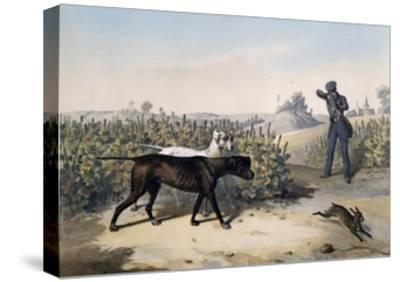 Hare Hunting with English Pointers and Lithograph by Le Pan--Stretched Canvas Print