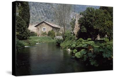 River Ninfa, Gardens of Ninfa, Cisterna Di Latina, Rome, Lazio, Italy--Stretched Canvas Print