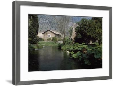 River Ninfa, Gardens of Ninfa, Cisterna Di Latina, Rome, Lazio, Italy--Framed Photographic Print