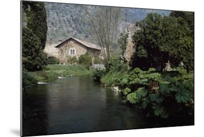 River Ninfa, Gardens of Ninfa, Cisterna Di Latina, Rome, Lazio, Italy--Mounted Photographic Print
