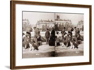 Stereoscopic View of a Flower Market, Paris, 1890--Framed Photographic Print