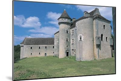 Low Angle View of a Castle, Vaillac Castle, Aquitaine, France--Mounted Photographic Print