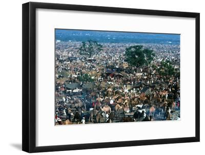Pushkar Festival, Pushkar, Rajasthan, India--Framed Photographic Print