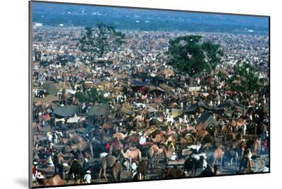 Pushkar Festival, Pushkar, Rajasthan, India--Mounted Photographic Print