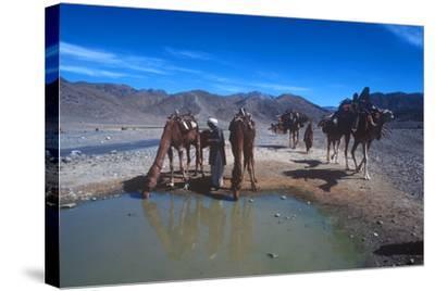 Desert Nomads, Bolan Pass, Pakistan--Stretched Canvas Print
