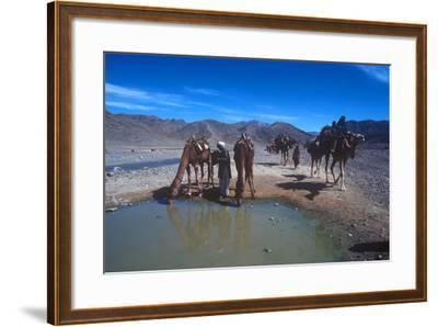 Desert Nomads, Bolan Pass, Pakistan--Framed Photographic Print
