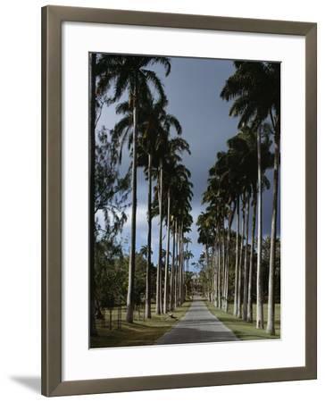 Codrington College, Barbados--Framed Photographic Print