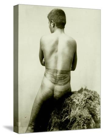 View of a Samoan Pe'A Tattoo, 19th Century--Stretched Canvas Print