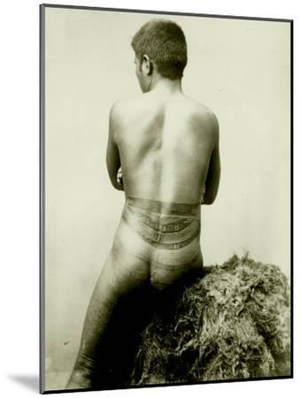View of a Samoan Pe'A Tattoo, 19th Century--Mounted Photographic Print