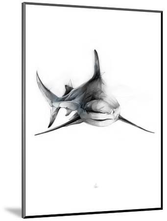 Shark 2-Alexis Marcou-Mounted Art Print