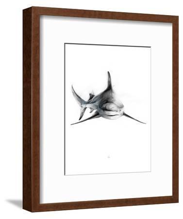 Shark 2-Alexis Marcou-Framed Art Print