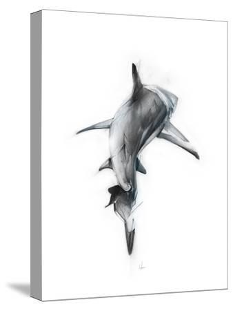 Shark 3-Alexis Marcou-Stretched Canvas Print
