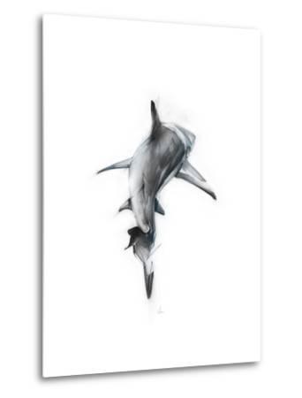 Shark 3-Alexis Marcou-Metal Print