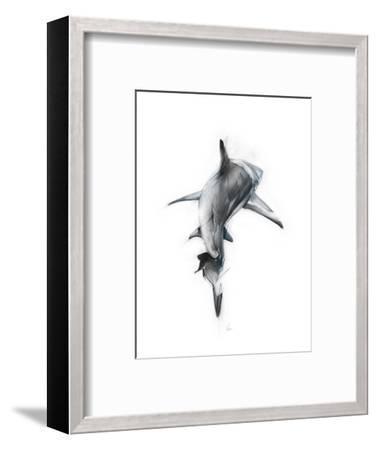 Shark 3-Alexis Marcou-Framed Art Print