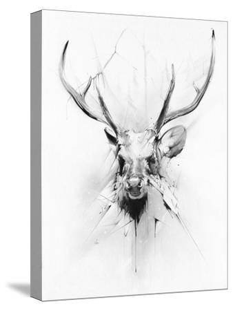 Stag-Alexis Marcou-Stretched Canvas Print