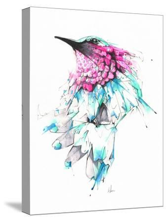 Hummingbird-Alexis Marcou-Stretched Canvas Print