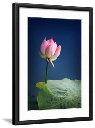 Remember Me-Philippe Sainte-Laudy-Framed Photographic Print