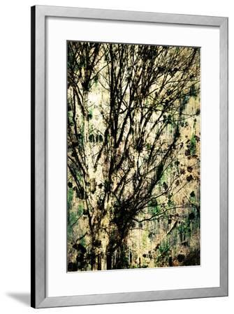 As Old as Time-Ursula Abresch-Framed Photographic Print