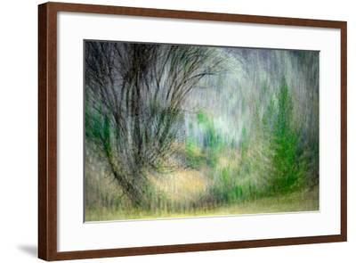 Spring Dance-Ursula Abresch-Framed Photographic Print