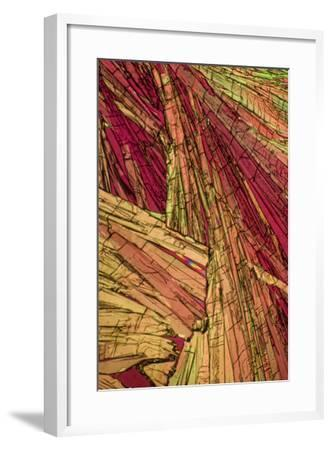 A Photomicrograph, a Picture Taken Through a Microscope, of Salicylic Acid-Cesare Naldi-Framed Photographic Print