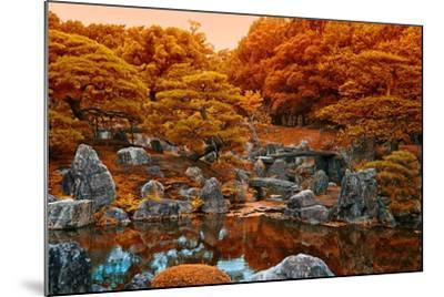Fall Colors at the Pond of the Ninomaru Garden-Kike Calvo-Mounted Photographic Print