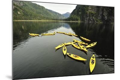 Tethered Yellow Sea Kayaks Floating in Rudyerd Bay-Jonathan Kingston-Mounted Photographic Print