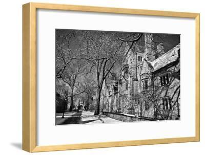 Winter Blizzard at Yale University-Kike Calvo-Framed Premium Photographic Print