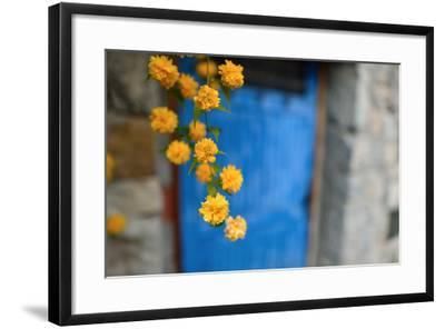 Marigolds Hang in Front of the Blue Door of a Stone Building-Keith Ladzinski-Framed Photographic Print