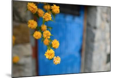 Marigolds Hang in Front of the Blue Door of a Stone Building-Keith Ladzinski-Mounted Photographic Print