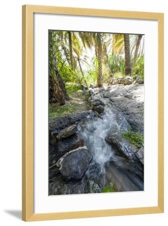 Water from a Mountain Spring Running Down a Falaj in an Ancient Village-Jason Edwards-Framed Photographic Print