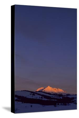 Distant View of Snow-Covered Electric Peak-Tom Murphy-Stretched Canvas Print