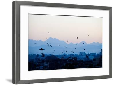 Kathmandu, Nepal: Birds Take Flight at Sunrise with the Himal Ganesh as a Backdrop-Ben Horton-Framed Photographic Print