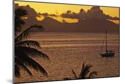 The Island of Mo'Orea as Seen from Tahiti-Mauricio Handler-Mounted Photographic Print