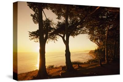 Sunset from Cliffs Above the Pacific Ocean at the Douglas Family Preserve-Macduff Everton-Stretched Canvas Print