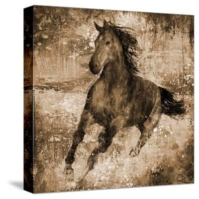 Running Free-Eric Yang-Stretched Canvas Print