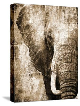African Animals I - Sepia-Eric Yang-Stretched Canvas Print