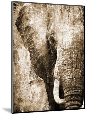 African Animals I - Sepia-Eric Yang-Mounted Premium Giclee Print