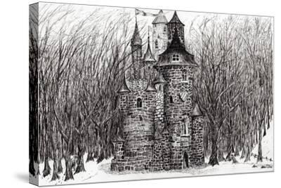 The Castle in the Forest of Findhorn, 2009-Vincent Alexander Booth-Stretched Canvas Print