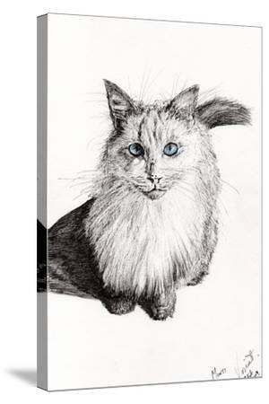 Monty, 2009-Vincent Alexander Booth-Stretched Canvas Print