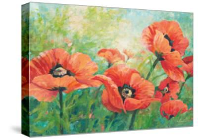 Red Poppies-Wendy Kroeker-Stretched Canvas Print