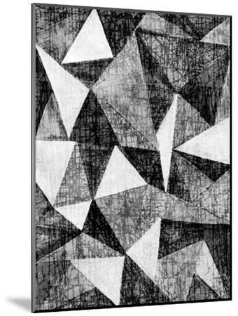 Natural Architecture 2 B&W-Edith Lentz-Mounted Art Print