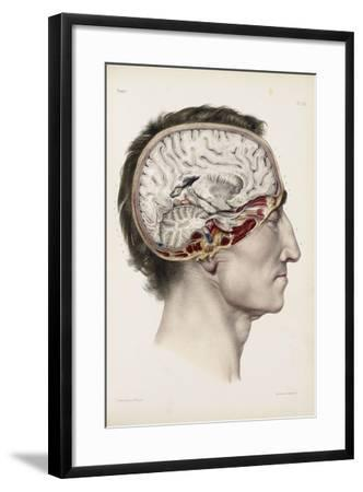 A Hand Coloured Lithograph of a Dissected Head in Profile Showing the Brain-Nicolas Henri Jacob-Framed Giclee Print