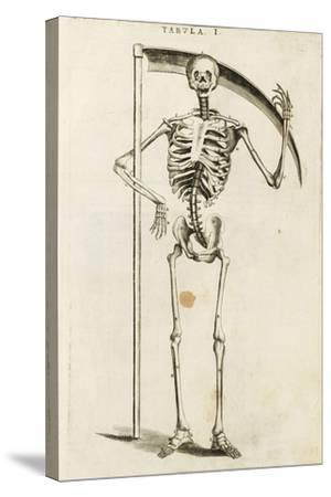 A Skeleton Holding a Scythe in the Style of a Grim Reaper--Stretched Canvas Print