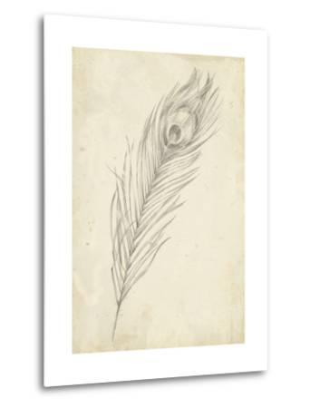 Peacock Feather Sketch II-Ethan Harper-Metal Print