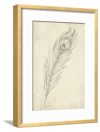 Peacock Feather Sketch II-Ethan Harper-Framed Art Print