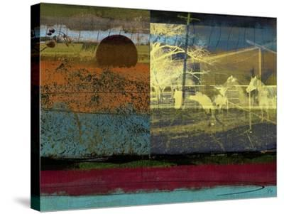 Horse and Hay Collage-Sisa Jasper-Stretched Canvas Print