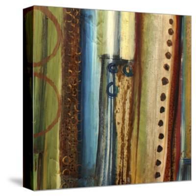 Spice Impressions VIII-Irena Orlov-Stretched Canvas Print