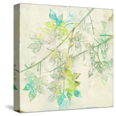Merged Maple II-Jennifer Goldberger-Stretched Canvas Print