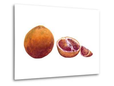 Watercolor Blood Orange-Michael Willett-Metal Print
