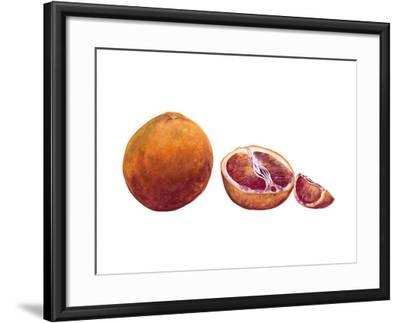 Watercolor Blood Orange-Michael Willett-Framed Art Print